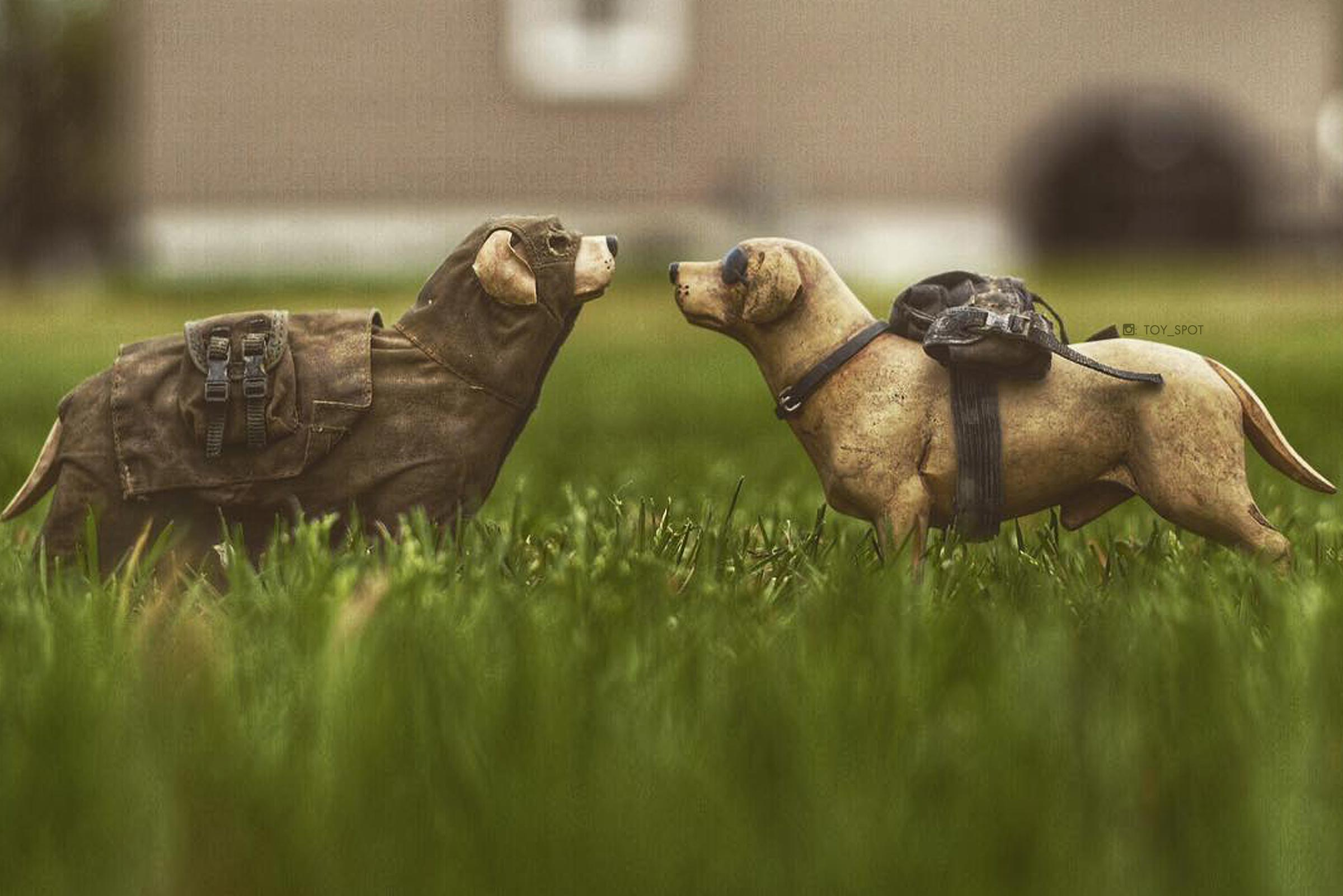 3a toy photography - dogs in the grass by toy_spot